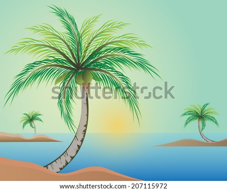 illustration of palm trees with coconut on the beach