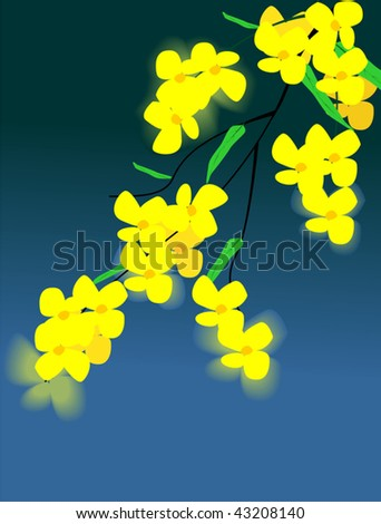 Illustration of plant with yellow flower
