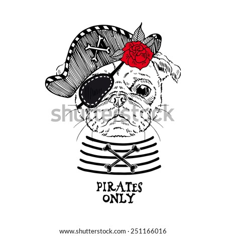 illustration of pug pirate - stock vector