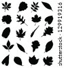 Illustration of silhouettes foliage-vector - stock vector