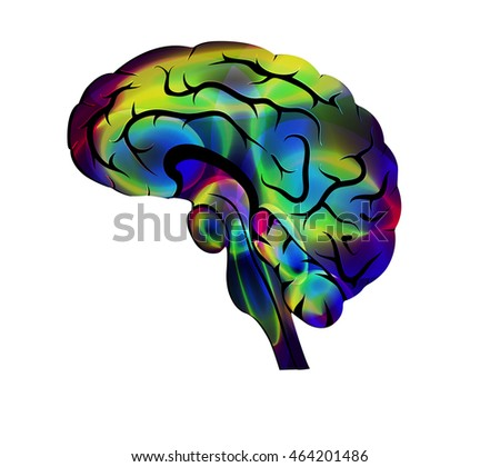 illustration of the brain. color creative icon.