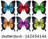 Illustration of the colorful butterflies on a white background - stock vector