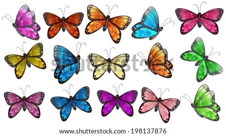 Illustration of the colourful butterflies on a white background - stock vector