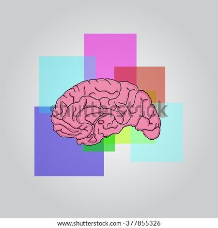 Illustration of the human brain - stock vector