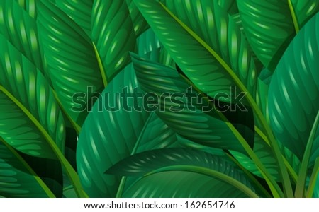 Illustration of the leaves - stock vector
