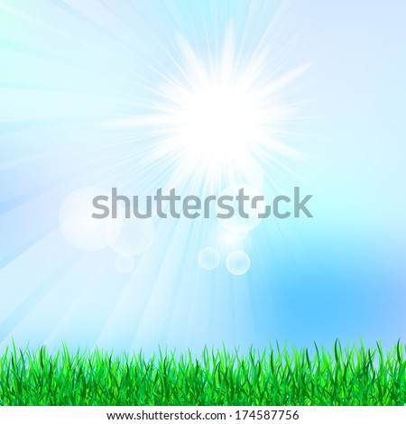Illustration of the summer background with green grass and blue sky  - stock vector