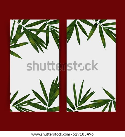 Illustration of  tropical plant banner