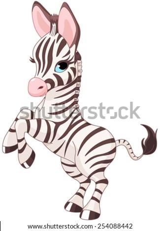 Illustration of very cute baby zebra - stock vector