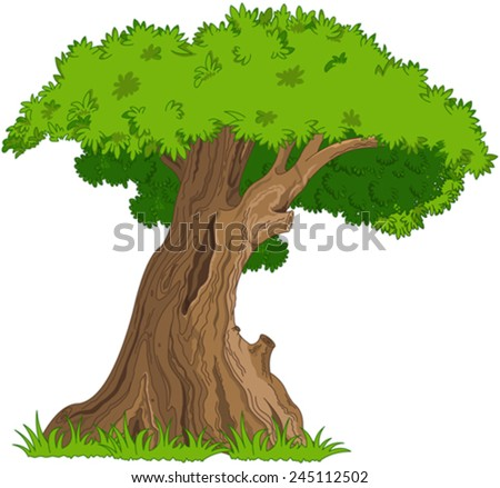 Illustration of very old oak - stock vector