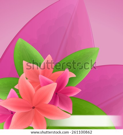 Illustration pink and red frangipani (plumeria), exotic flowers green leaves plant - vector - stock vector