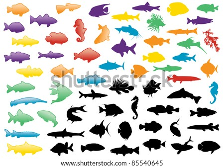 Illustration set of fish silhouettes. All objects are isolated and grouped. Colors and transparent background color are easy to adjust. - stock vector