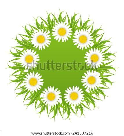 Illustration spring freshness round card with grass and camomiles flowers - vector - stock vector