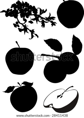 illustration with apples isolated in white background - stock vector