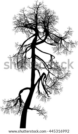 illustration with bare tree isolated on white background