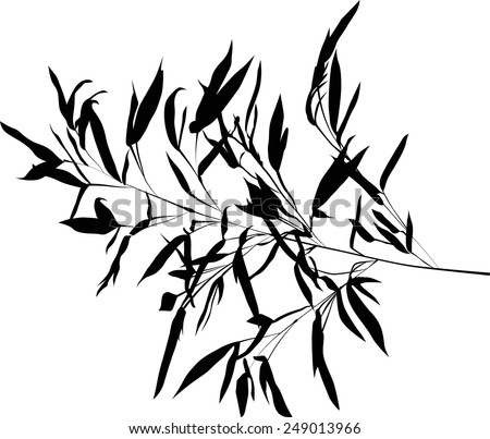 illustration with black bamboo branch isolated on white background - stock vector