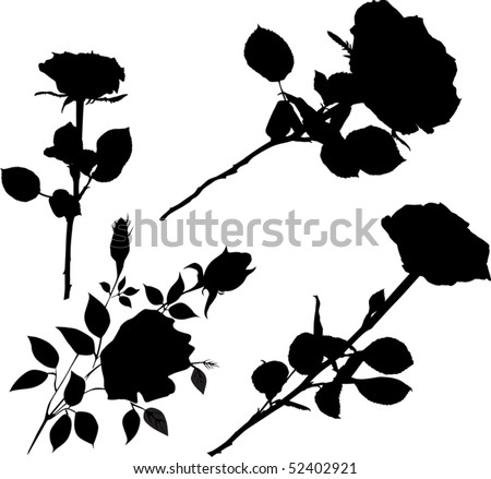 Illustration with black rose flowers collection stock vector