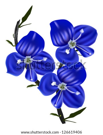 illustration with blue flowers on white background