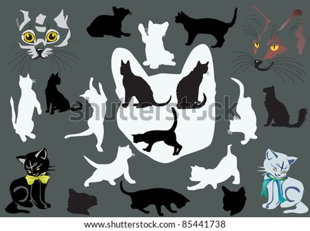 illustration with cat portraits and silhouettes collection