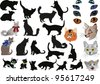 illustration with cats collection isolated on white background - stock photo