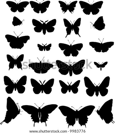 illustration with  collection isolated on white background - stock vector