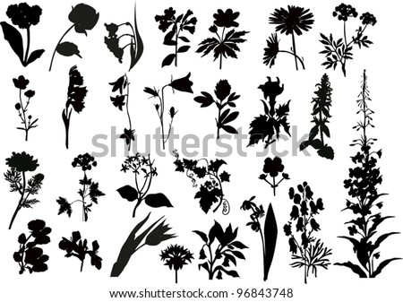 illustration with collection of flowers silhouettes isolated on white background - stock vector
