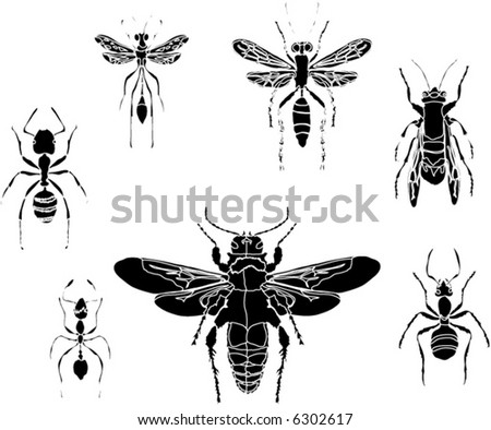illustration with different insect silhouettes isolated on white background - stock vector