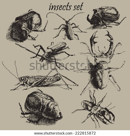 illustration with different insects on a gray background. set. - stock vector