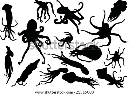 illustration with fifteen squid and octopus silhouettes
