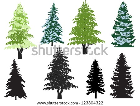 illustration with fir set isolated on white background - stock vector
