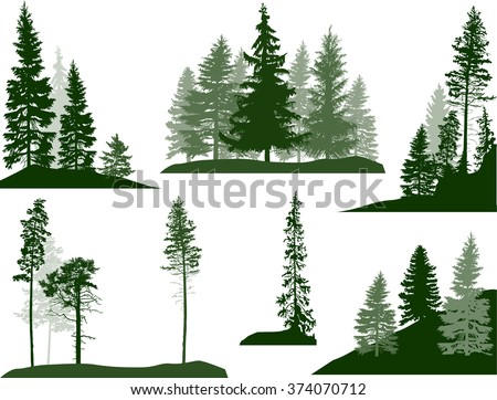 illustration with fir trees set isolated on white background - stock vector