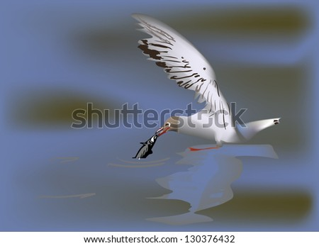 illustration with gull catching small fish in water - stock vector