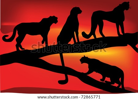 illustration with leopard family at red sunset - stock vector