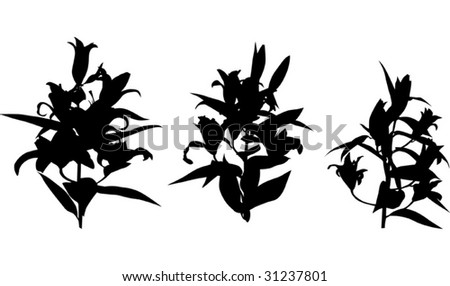 Ss16 Theme 3 The Drifters together with 799 further Leaf 4446538 likewise  on cactus shade plants