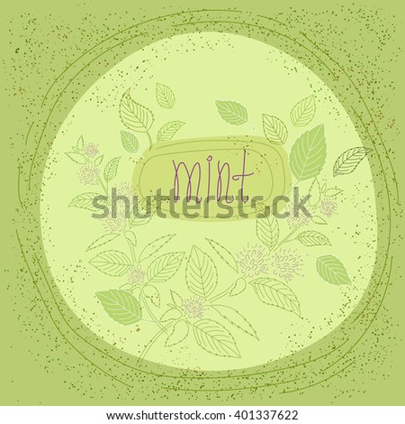 Illustration with mint and mint leaves