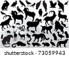 illustration with mountain animals collection isolated on white - stock vector