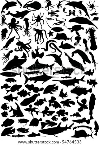 illustration with sea animals isolated on white background - stock vector