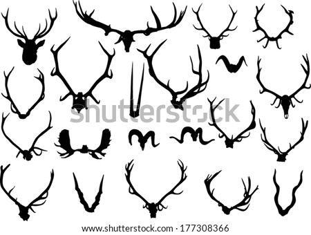 illustration with set of antler and horns isolated on white background - stock vector