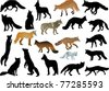 illustration with set of foxes and wolves isolated on white background - stock
