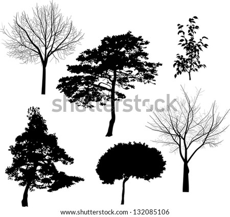 illustration with six tree silhouettes isolated on white background - stock vector