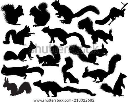 illustration with sixteen squirrels isolated on white background - stock vector