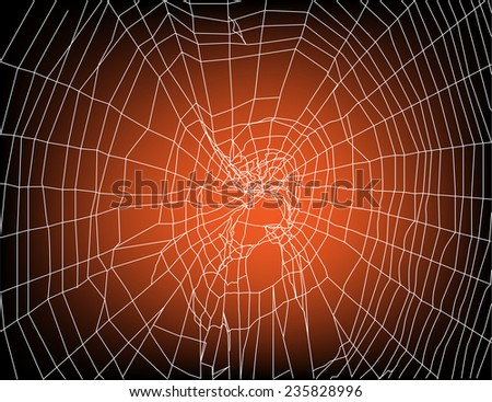 illustration with spider web on sunset background