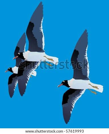 illustration with three gulls isolated on blue background - stock vector