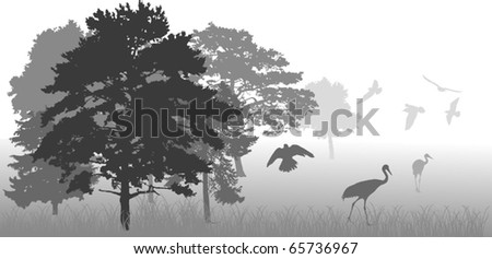 illustration with tree and birds silhouettes - stock vector