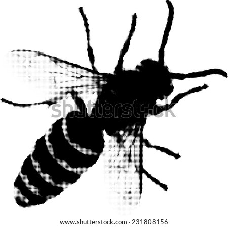 illustration with wasp from dots isolated on white background - stock vector