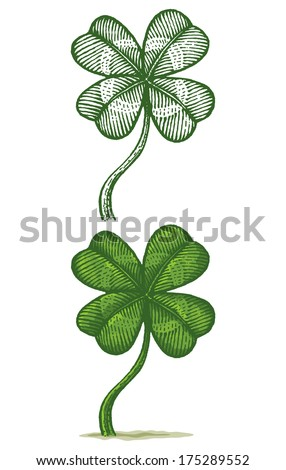 Illustrations of clovers - stock vector