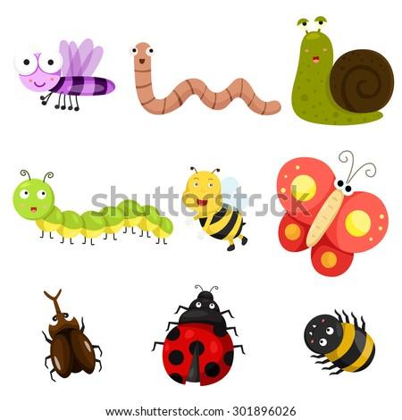 Illustrator of bug - stock vector