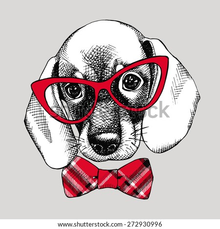 Image of a dog beagle in glasses with bow. Vector black and white illustration. - stock vector
