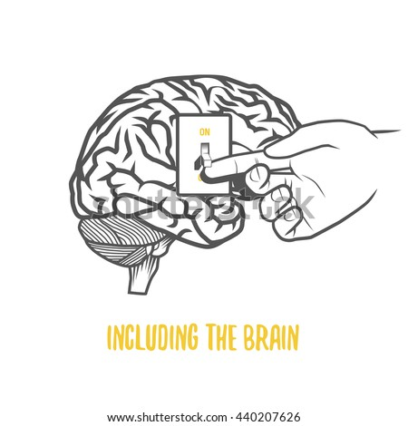 Including the Brain - stock vector