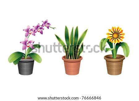 Indoor office plants - 2 - stock vector