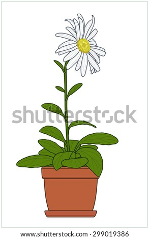 "Indoor plant in a flowerpot. Vector illustration of a series of ""Houseplants""."